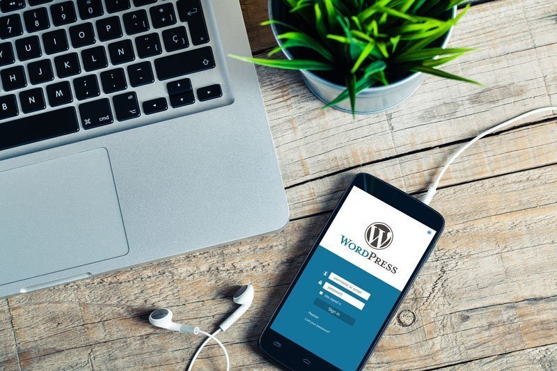 Updating WordPress core files, themes and plugins